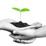 Vers un modèle d'entreprise européenne durable ?